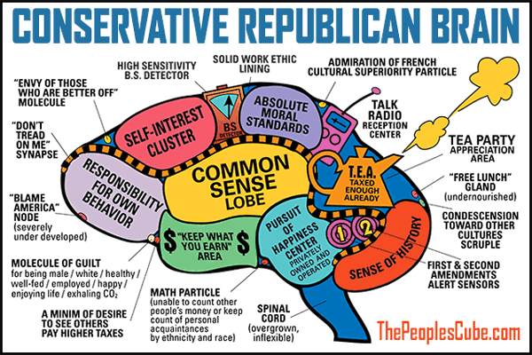 Capitalist conservative Republican brain