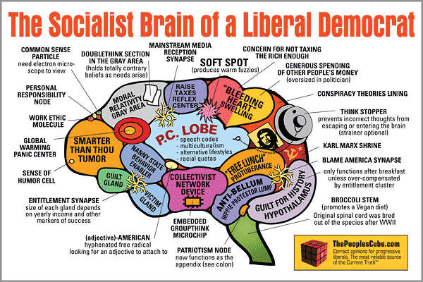A Guide to the Liberal Mind