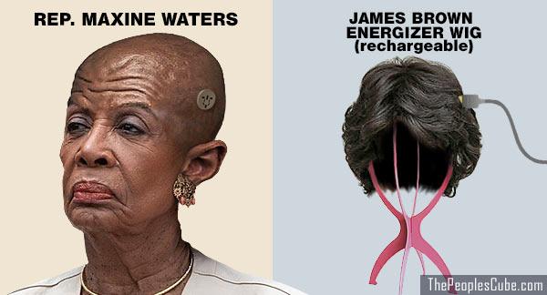 Maxine_Waters_No_Hair_Wig.jpg