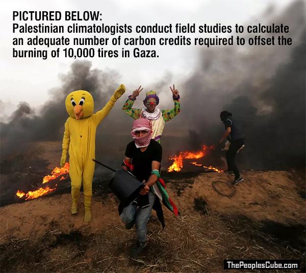Palestinian_Climatologists_Gaza.jpg