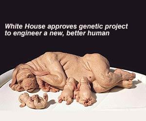 human-animal splicing