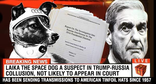 Laika_Mueller_Collusion.jpg