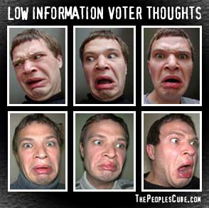 Funny Low Information Voter Thoughts political satire