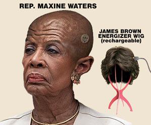 Maxine Waters wig