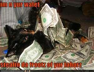 cat_money_01.jpg
