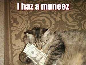 cat_money_11.jpg