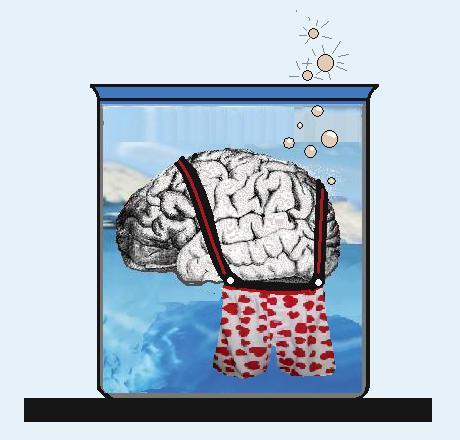 Brain Boxers.jpg