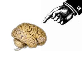BrainPoint.jpg