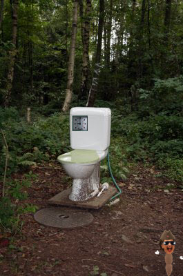 once-a-day-flusher_toilet.jpg