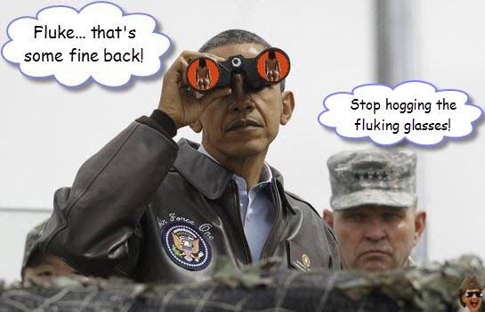 obama-sees-fluke.jpg
