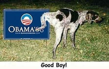 dog-peeing-on-obama-sign.jpg