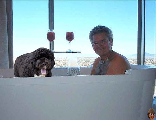 gsa-hot-tub-bo.jpg