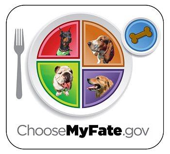 Les-Choose-my-plate-gov.jpg