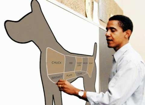 Obama_Draw_Dog_Map.jpg