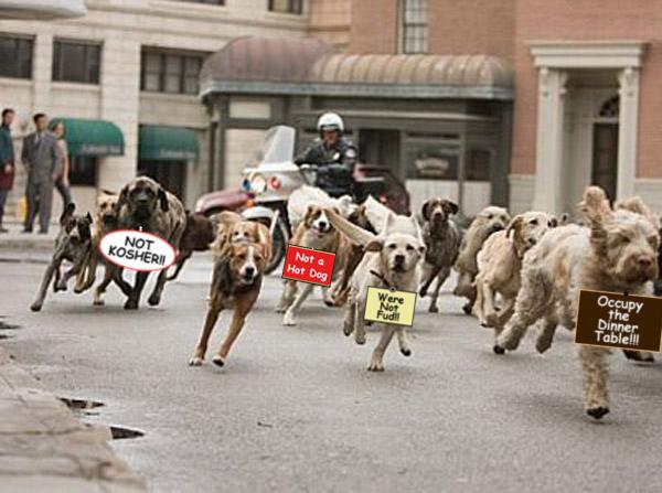 dogsOccupy.jpg