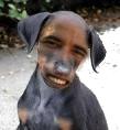 obama-dog2.jpg