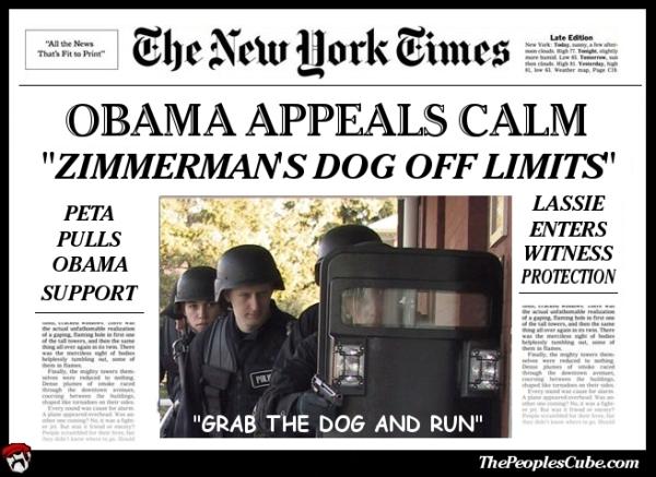 obama appeals.jpg