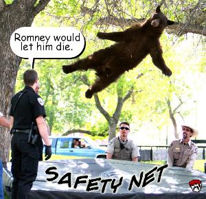 safety net 300.jpg