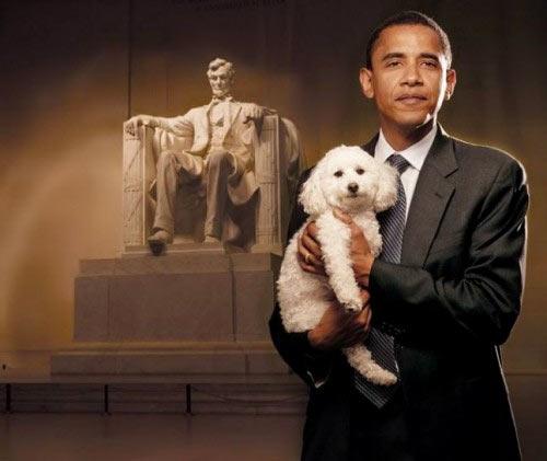 Obama_Poodle_Lincoln.jpg
