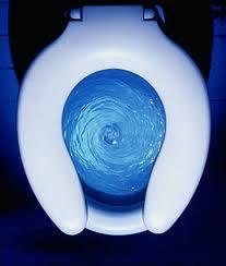 toilet 6.jpg