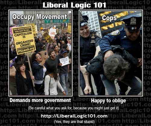 LiberalLogic101_OWS.jpg