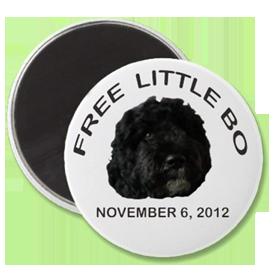 free little bo magnet-transparent-280.png
