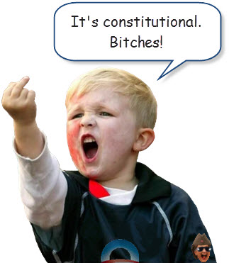 its-constitutional-bitches.jpg