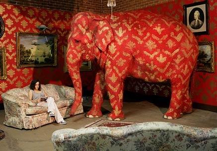 elephant_in_room.jpg