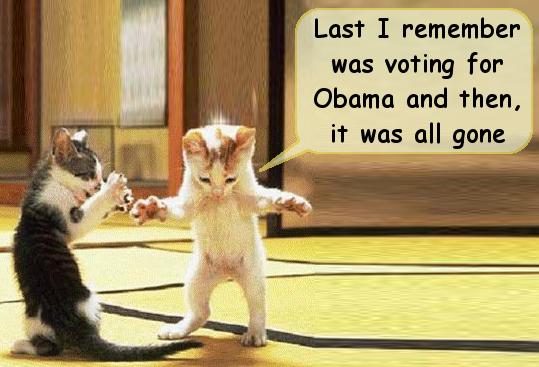 obama voter.jpg