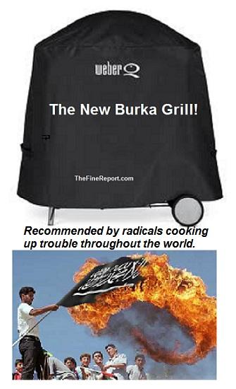 Burkha grill for cube.jpg