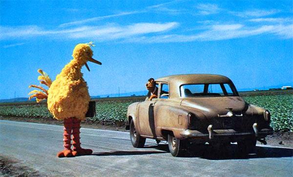 Big_Bird_Cuba.jpg