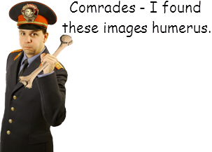 i-found-these-humerus.png