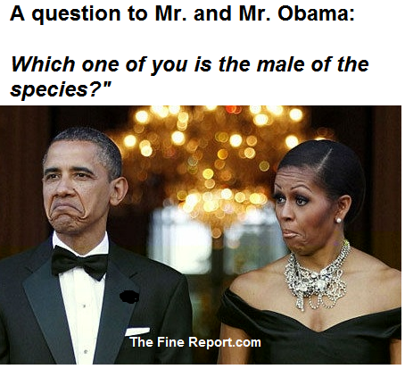 QUestion to Mr and Mr Obama.png