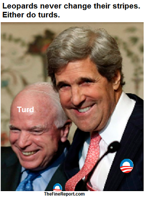 McCain and Kerry turd cube.png
