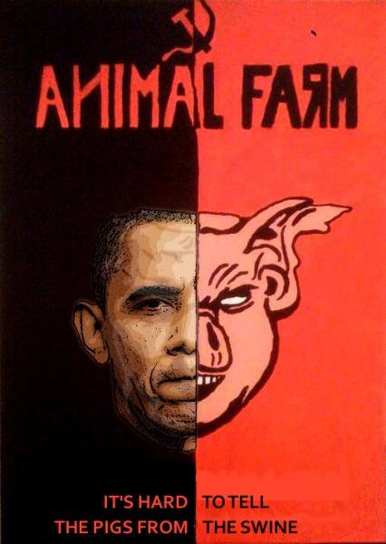 pigs swine.jpg