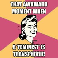 Feminist_Transphobic.png