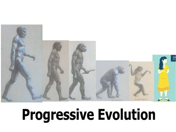 evolution7.jpg
