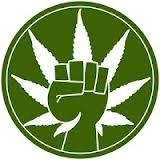 marajuana.jpg