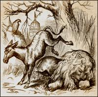 donkey_history.jpg