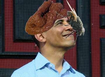 obamafLY.jpg