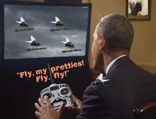 drone flies.jpg