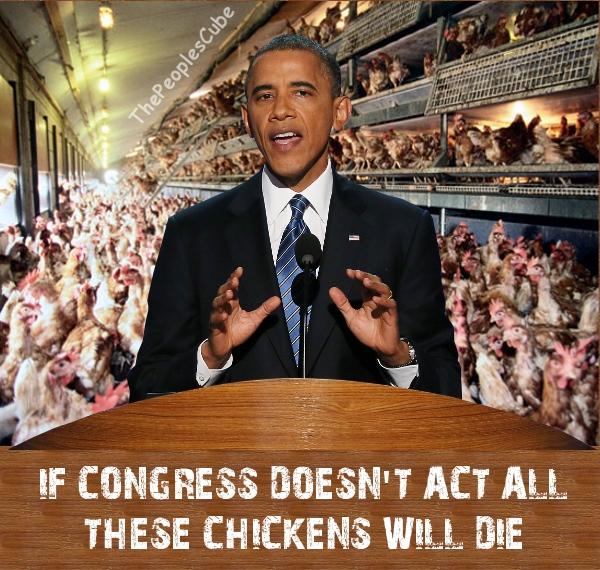 obama chickens.jpg