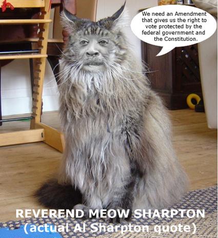 meowsharpton.jpg