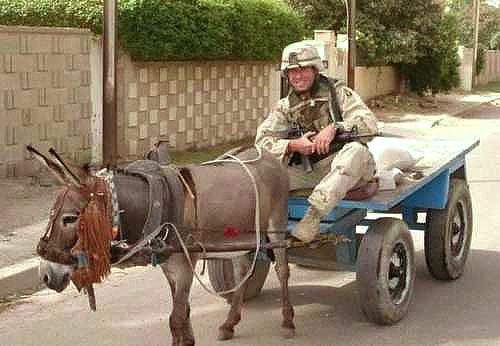 Military_Budget_Cuts_Donkey.jpg