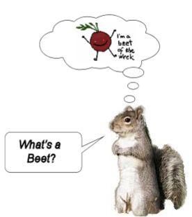 Whats a beet.jpg