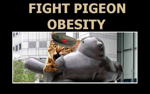 Pigeon_Obesity.jpg