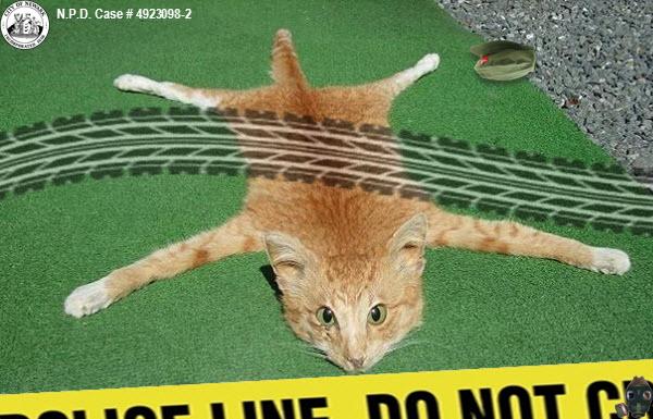 chairman-meow-no-meow2.jpg