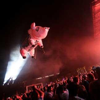 Pig_PinkFloyd.jpg