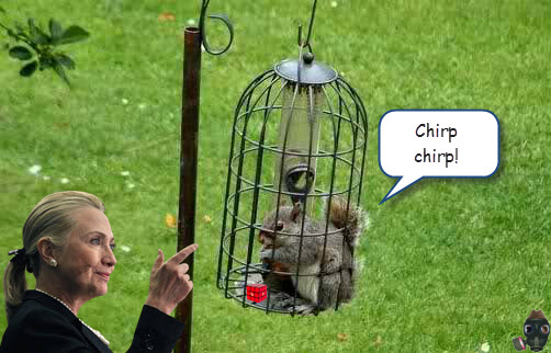 captain-craptek-in-bird-feeder.jpg