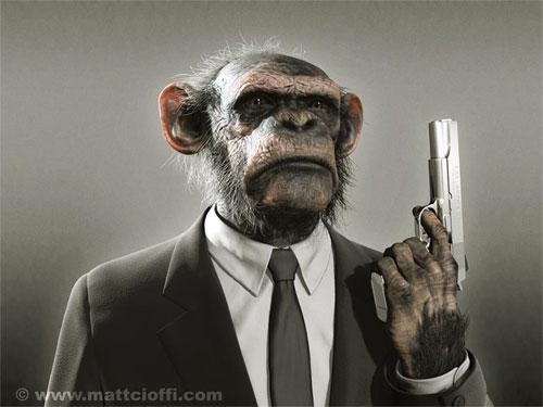 gansta_chimp.jpg